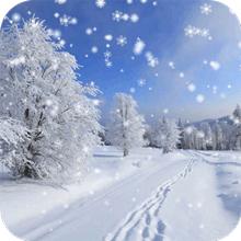 Зима Снег Live Wallpaper