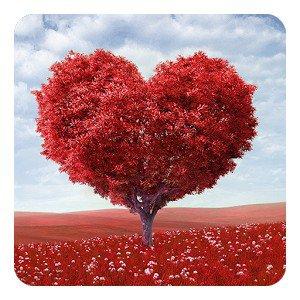 Дерево Любви Живые Обои